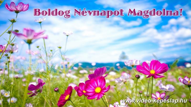 boldog névnapot magdolna Boldog névnapot Magdolna! boldog névnapot magdolna