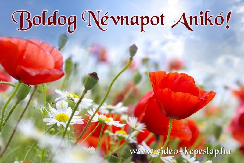 boldog névnapot anikó Boldog Névnapot Anikó! boldog névnapot anikó